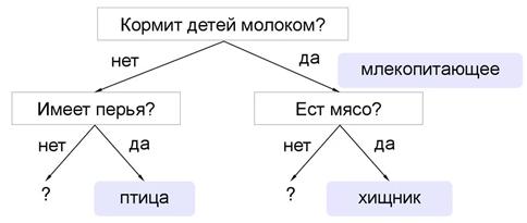 Primer printsipa raboty algoritma Random Forest