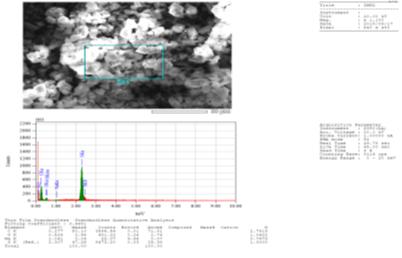 Rezultaty elementnogo i mikroskopicheskogo analiza odnogo iz indikatorov.